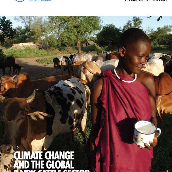 report climate change and the global dairy sector.png