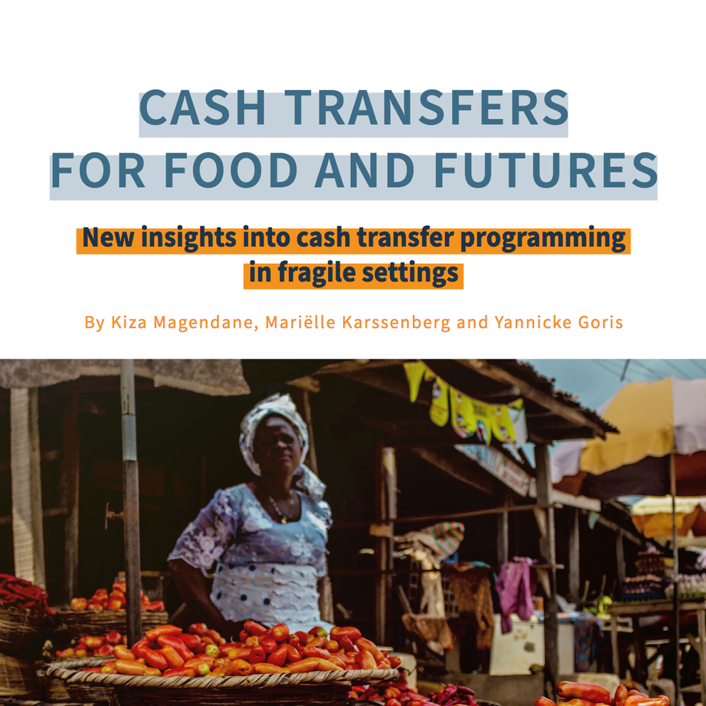 cash transfers for food and future.png